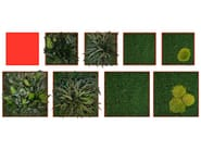 Vegetal frame TUILERIES - Add Plus