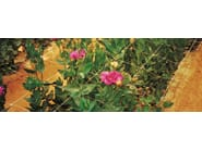 Plastic vertical gardening trellis HORTONOVA - TENAX
