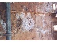 Tempio di San Biagio, Montepulciano (Siena) - Macchie da sali igroscopici sul travertino della facciata