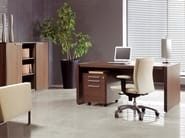 Wooden office storage unit STATUS | Office storage unit - MDD