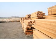 Logs, lumber Logs and timber - BELLOTTI