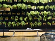Ash bench / coffee table LINE BENCH - La Cividina