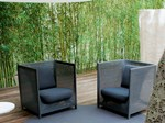 Garden armchair HAVEN | Armchair - Paola Lenti
