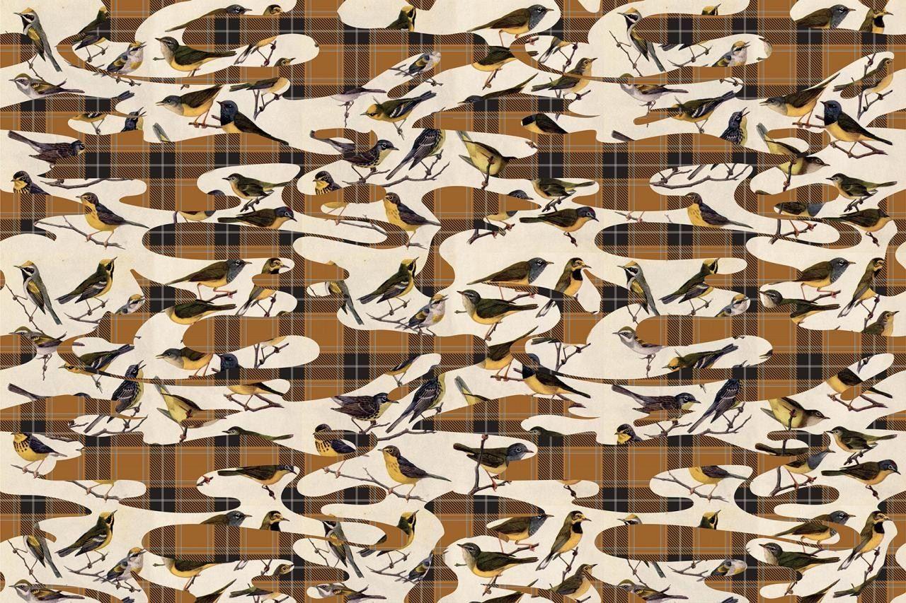Motif washable vinyl wallpaper birds by glamora for Washable wallpaper
