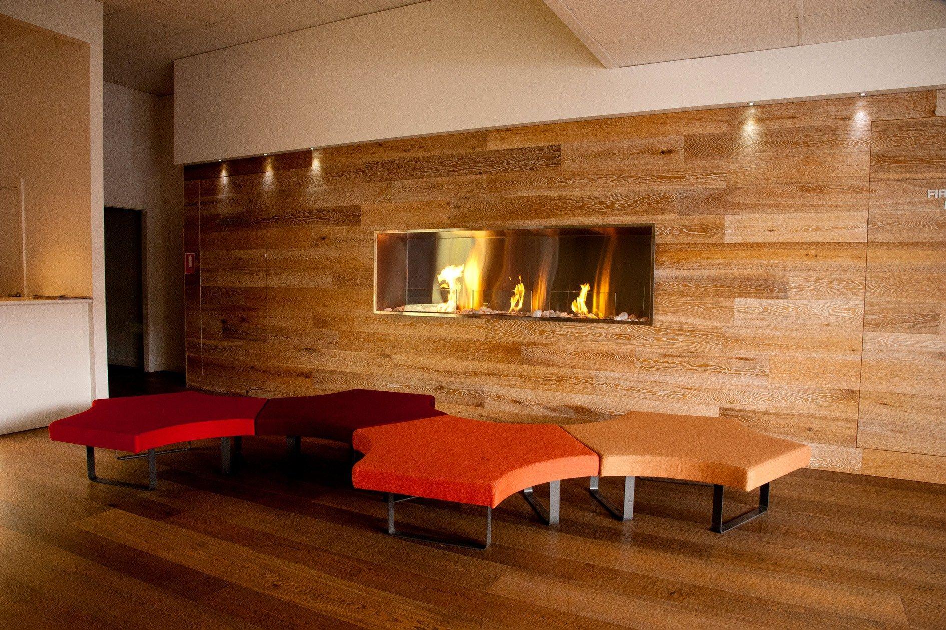 bioethanol fireplace insert firebox ss by ecosmart fire -