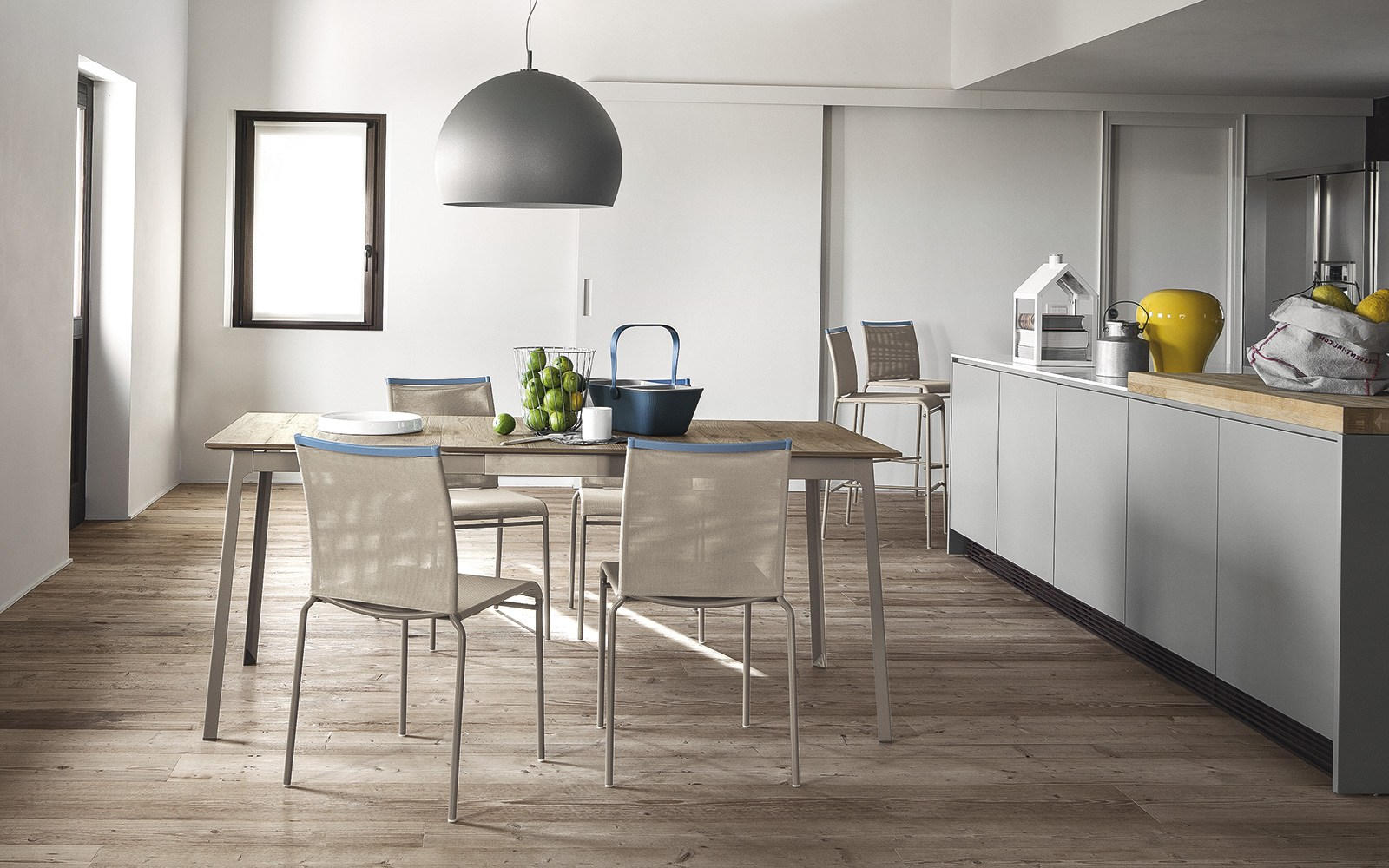 Web sedia in rete by calligaris design archirivolto for Calligaris sedie