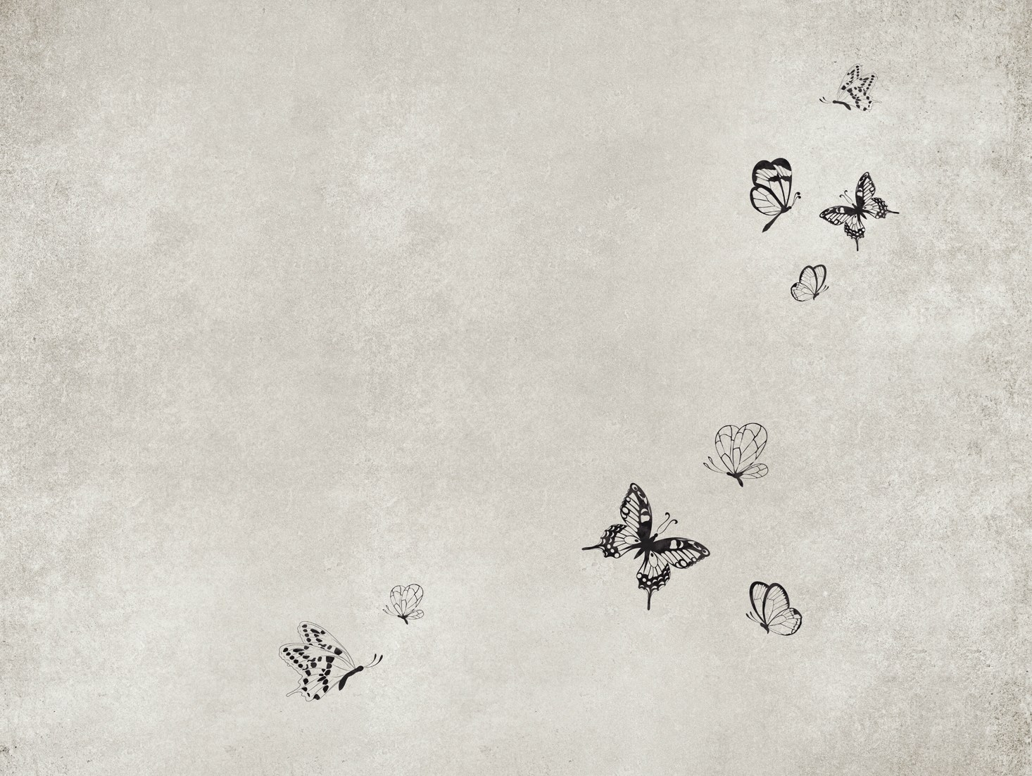 Papel pintado efecto muro para ba os mariposa by wall dec - Papel pintado mariposas ...