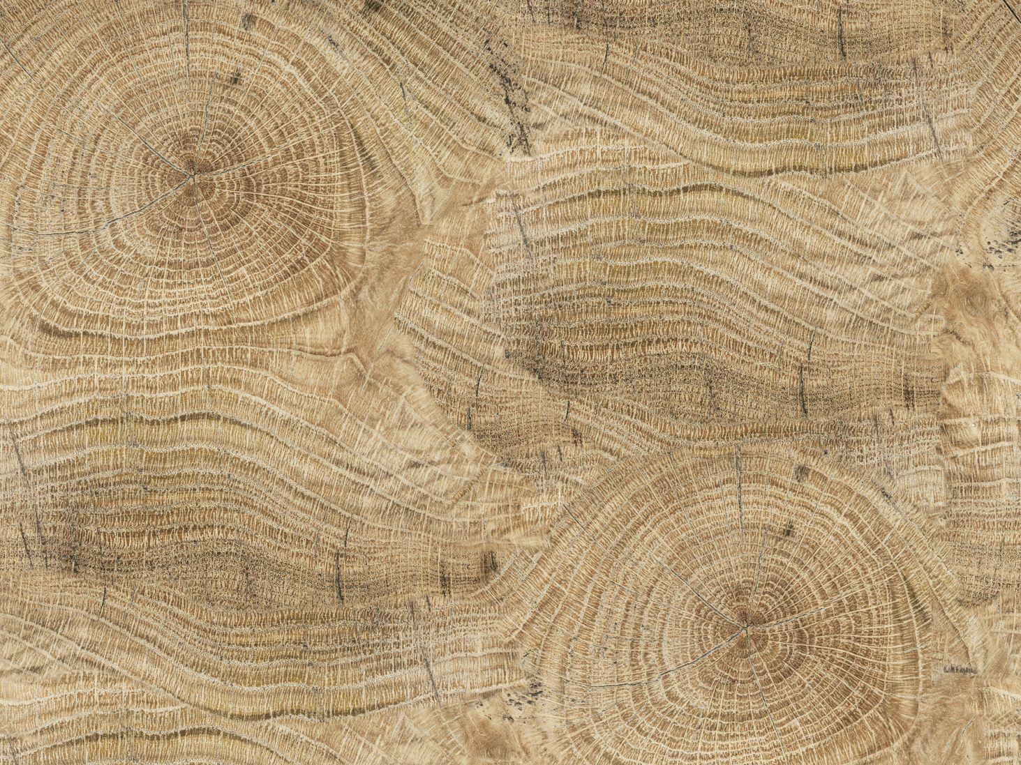 Papel pintado efecto madera para ba os life lines by wall for Papel pared madera