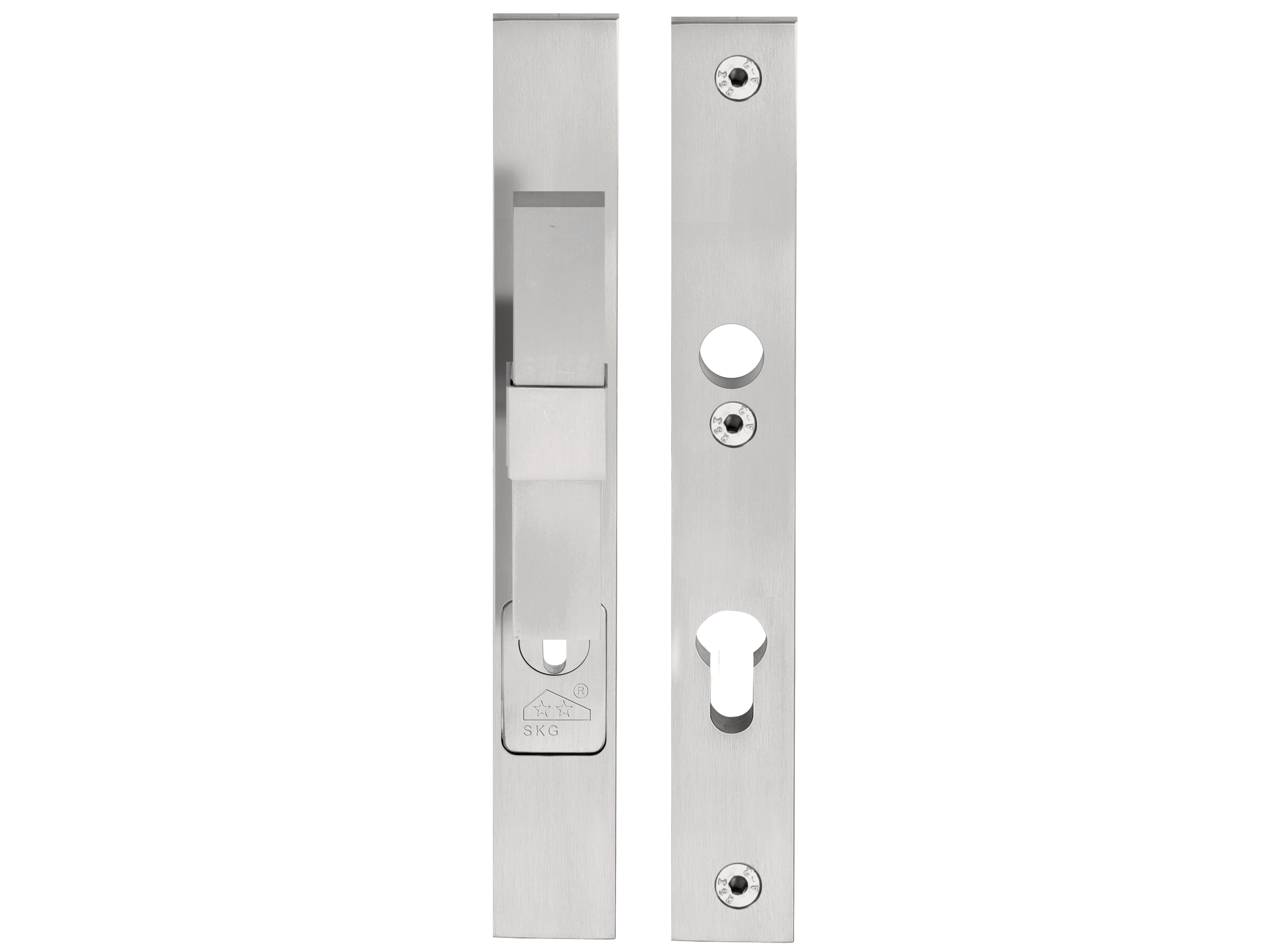 3140 #6B6B60 Stainless Steel Exterior Door Handle On Back Plate VOLUME Exterior  picture/photo Stainless Steel Front Doors 47394187