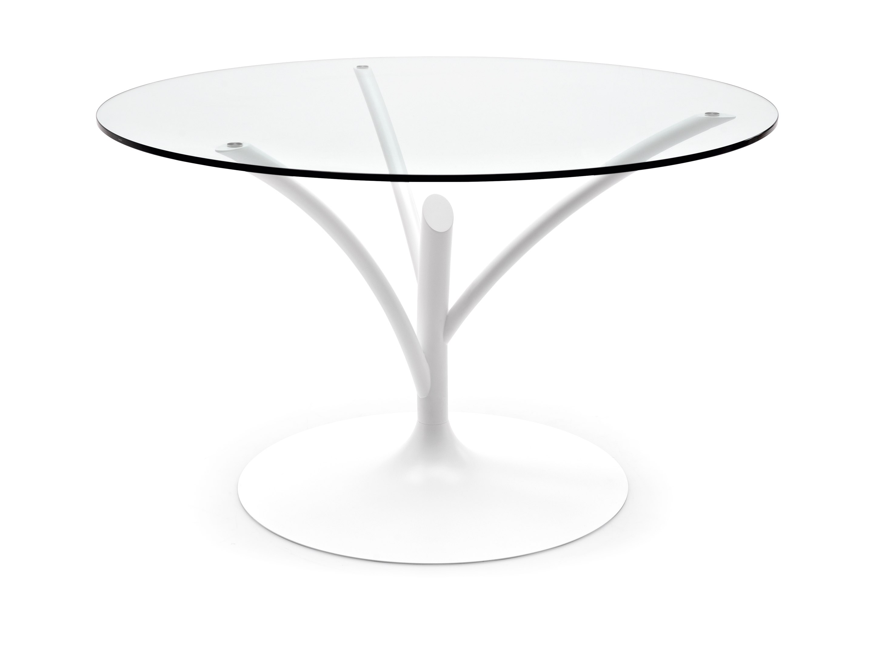Acacia By Calligaris Design Marcello Ziliani