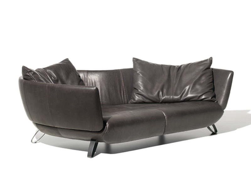ds 102 sofa by de sede design mathias hoffman. Black Bedroom Furniture Sets. Home Design Ideas