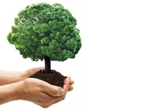 Terra Futura '09: buone pratiche di sostenibilità ambientale