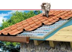 Isotec di Brianza Plastica, una campagna a quattro zampe, per un tetto a sette vite