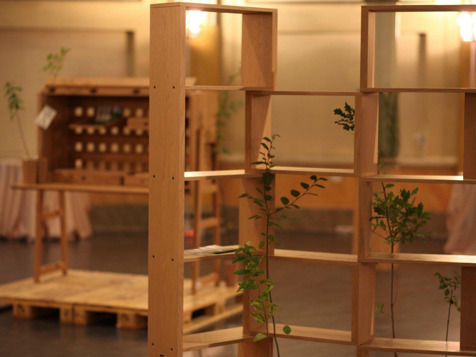 Al via la seconda edizione del concorso La foresta in una stanza