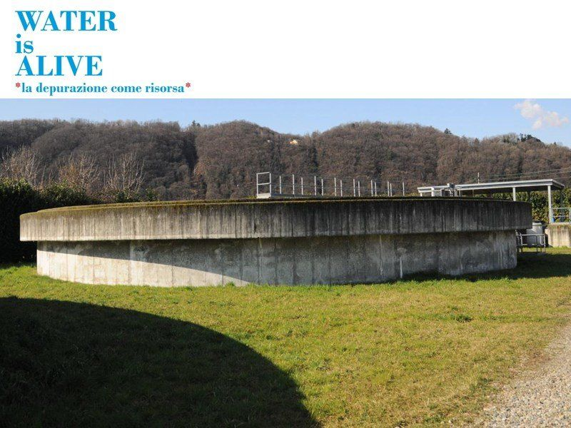 Water is Alive, la depurazione come risorsa
