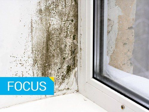 Umidit condensa e muffe tutte le soluzioni - Come togliere l umidita in casa ...