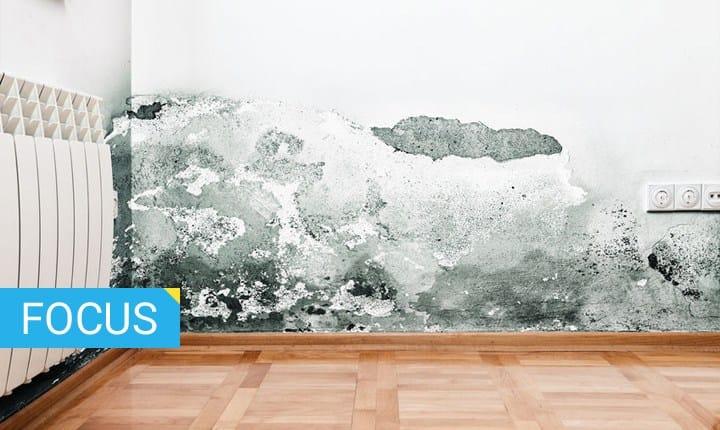 Migliore Pittura Murale Per Interni.Il Miglior Antimuffa La Guida Per Sceglierlo