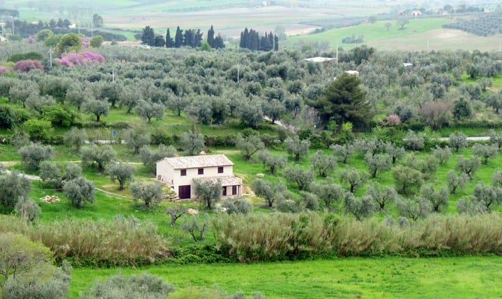 Toscana, via libera al recupero degli edifici rurali abbandonati