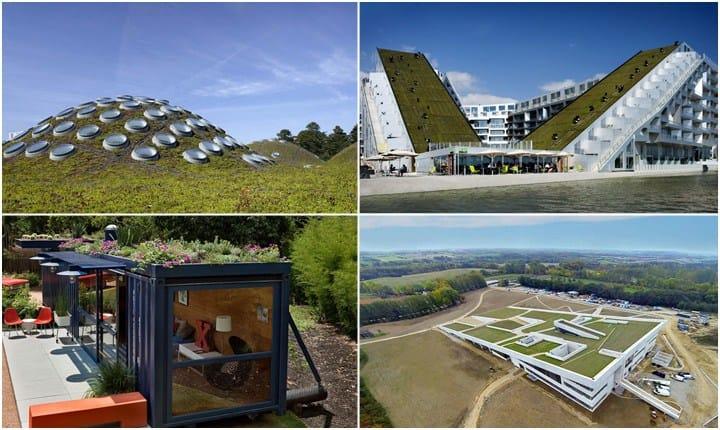 Tetti verdi, la città del futuro incontra la natura