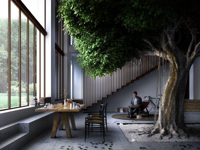 The Greenery: costruire una casa attorno ad un albero