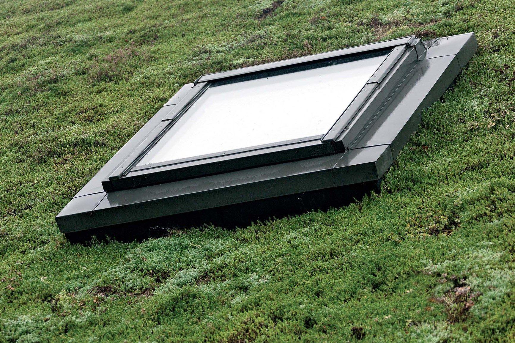 Realizzare Prato Su Cemento il prato sul tetto