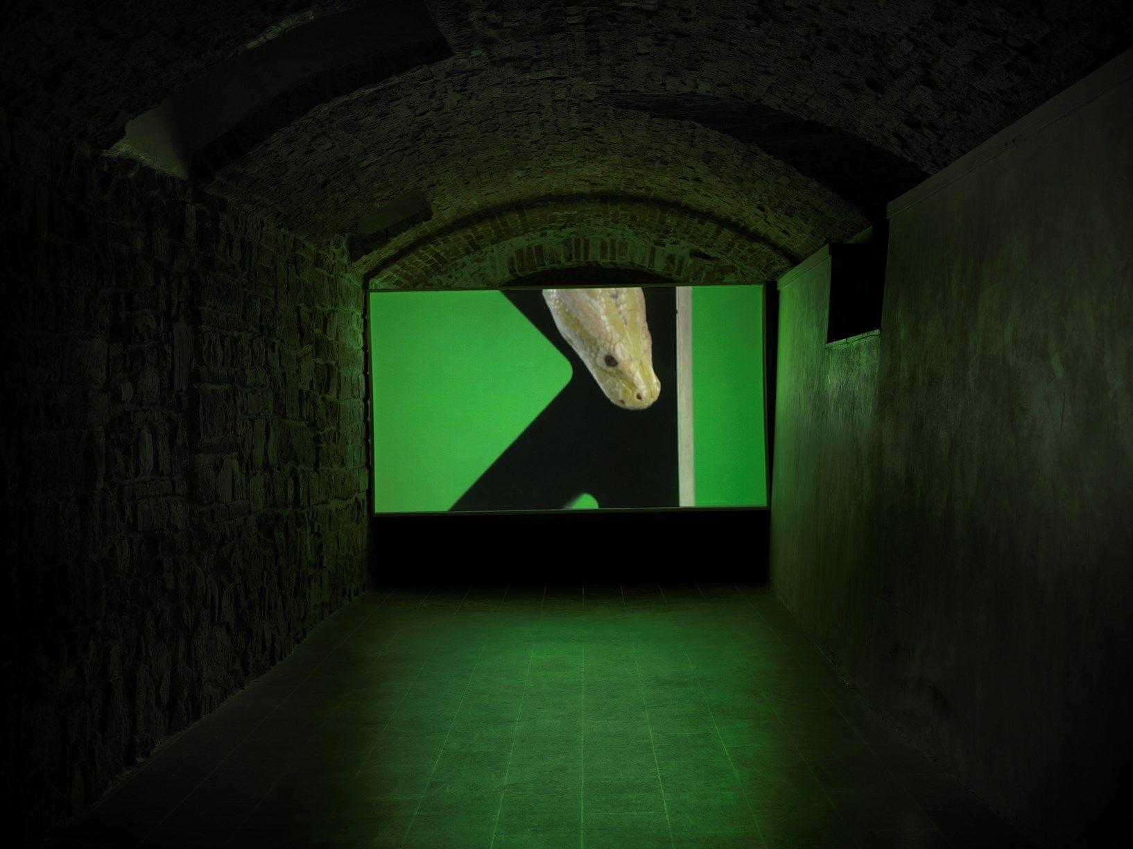 Luca Trevisani Museo M.Marini 22-3-14_0049