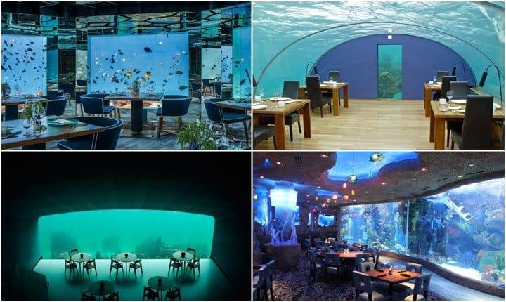 Ristoranti sott'acqua, il mondo sottomarino alla portata di tutti