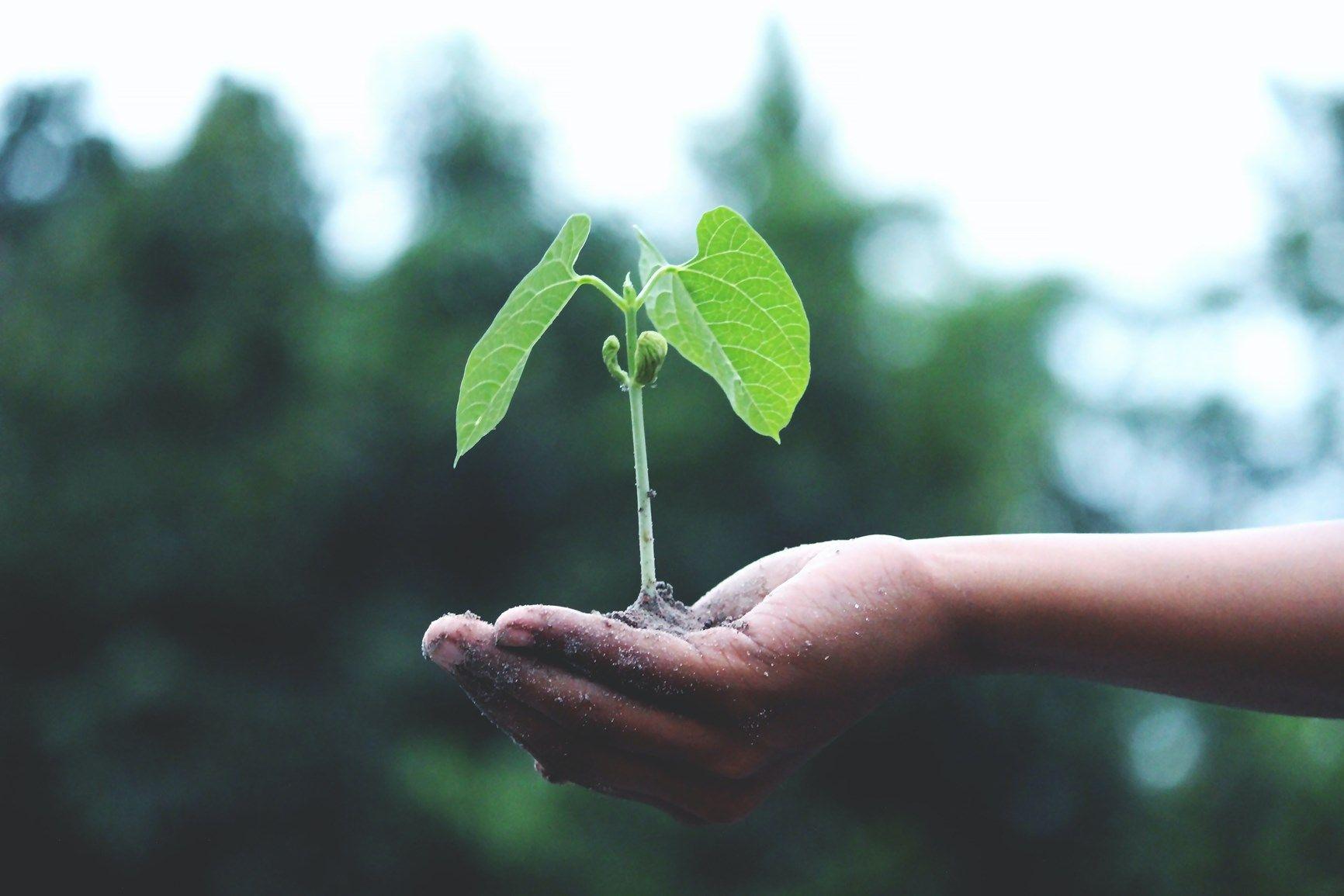 Il circolo virtuoso della produzione degli inverter: SMA, green company per vocazione