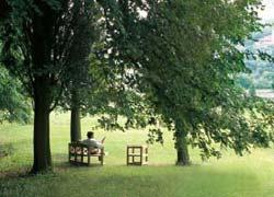 Al via concorso di outdoor design Oasi in giardino