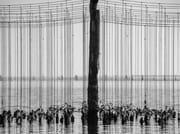 Premio nazionale di fotografia Mitilicoltori della Spezia 2020