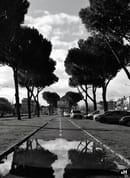 Ana Maria Horhat - Via Palmiro Togliatti, Roma