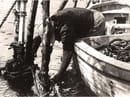 Foto storica miticoltori La Spezia