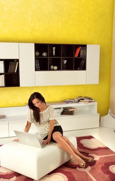 Biamax, la pittura decorativa più facile del mondo