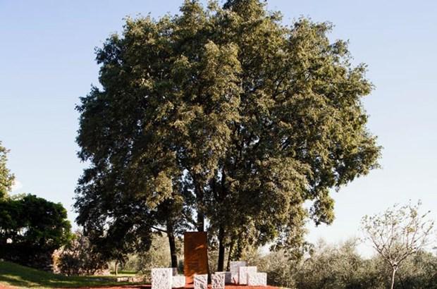 Un Parco dedicato a Giuseppe Ungaretti