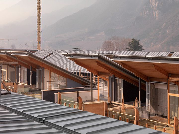 Zintek_Le albere di Renzo Piano