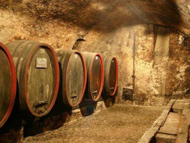 VINEUM il concorso per un percorso vinicolo a Cornaiano