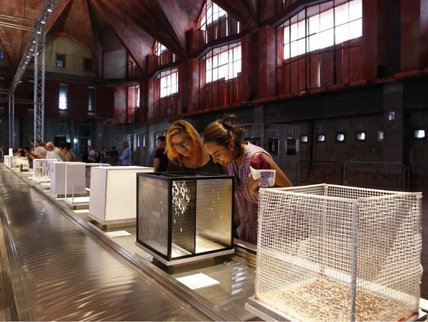 Architettura in Città: la mostra INtheCUBE
