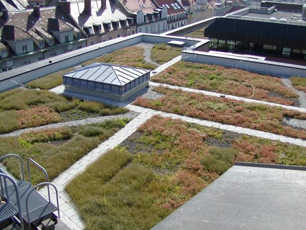 Tetti verdi con sistemi di impermeabilizzazione Triflex