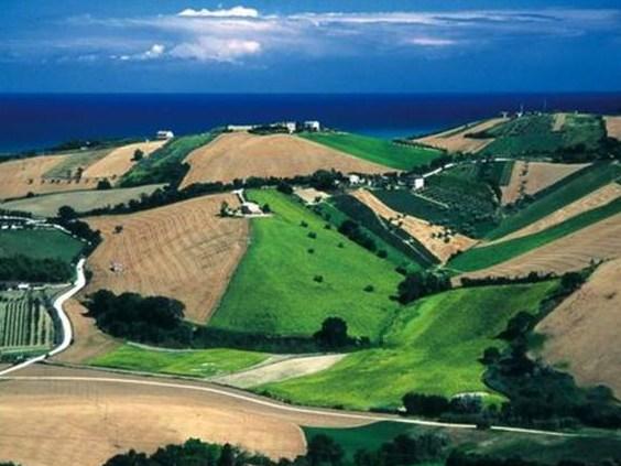 Ufficio Verde Ancona : Marche arriva il regolamento del verde urbano e del paesaggio rurale