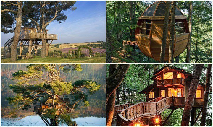 Vita e vacanza sospesi nel verde, case sull'albero in giro per il mondo