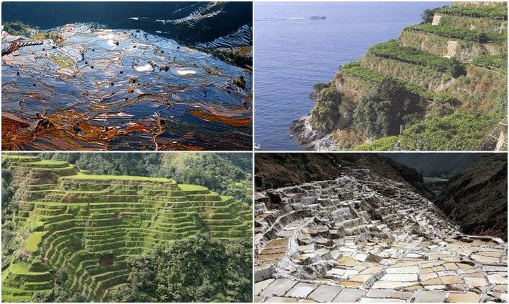 Terrazzamenti, ingegneria e architettura in agricoltura