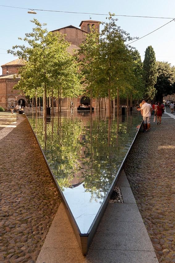 Che ci fanno 40 querce nel centro storico di Bologna?