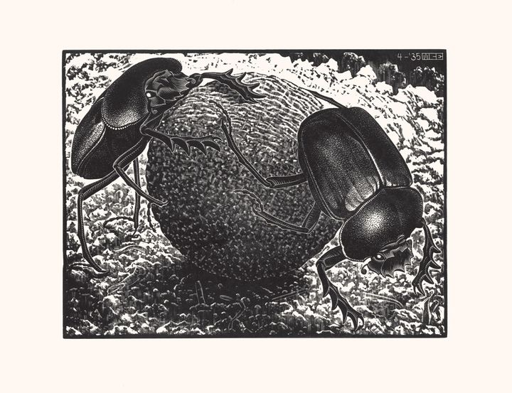 Scarabei, 1935 - All M.C. Escher works © 2018 The M.C. Escher Company. All rights reserved