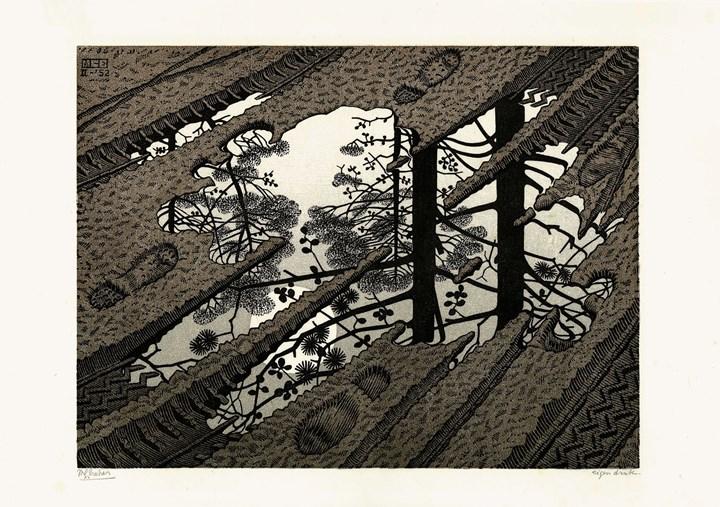 Pozzanghera, 1952 - All M.C. Escher works © 2018 The M.C. Escher Company. All rights reserved
