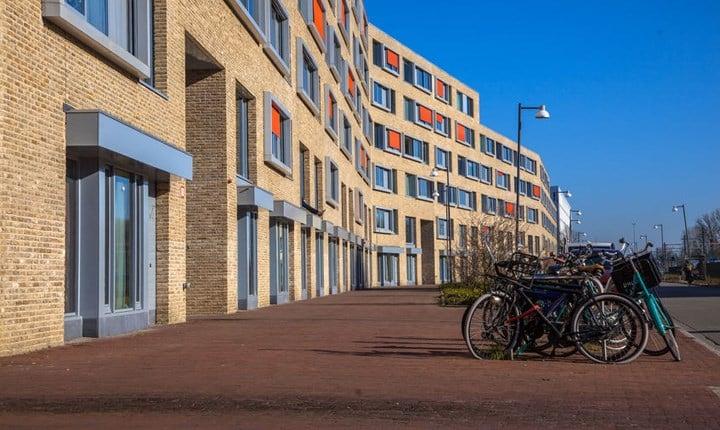 Foto: Rudmer Zwerver ©123RF.com