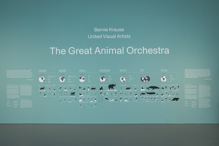 The Great Animal Orchestra - foto Gianluca Di Ioia