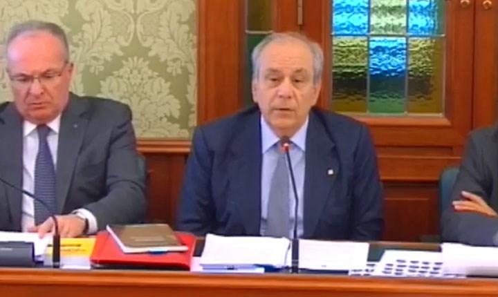 Foto: http://webtv.senato.it
