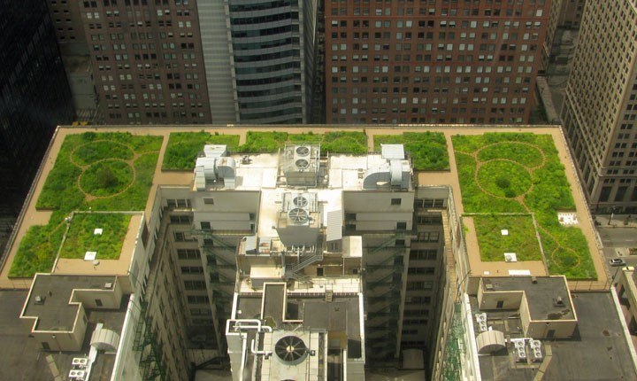Roof garden - By TonyTheTiger, CC BY-SA 3.0, httpscommons.wikimedia.orgwindex.phpcurid=5236408