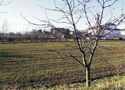 Bergamo realizza nuovi edifici residenziali