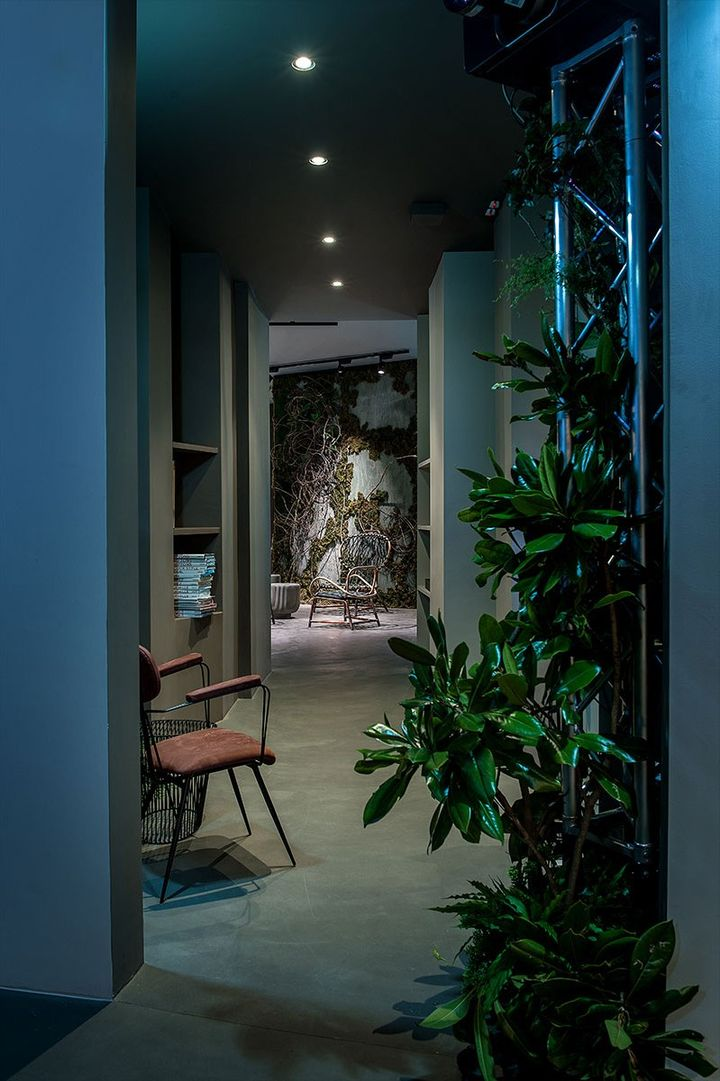 Nature invades the space of the Baxter Cinema in Milan